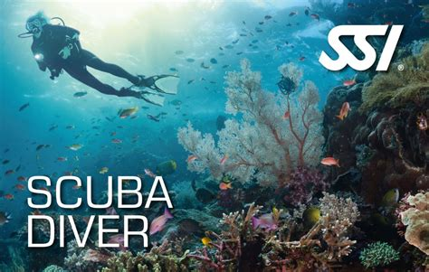 scuba diving courses try scuba diving in cebu - Dive Ssi