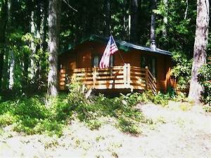 384 sq ft tiny cabin for sale with land for Tiny cabin for sale