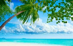 Seascapes ocean sea tropical beaches skies clouds trees ...