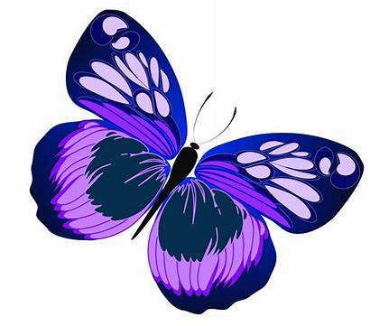 Colorful Butterflies Butterfly Clipart Flying Rose Clipartmag