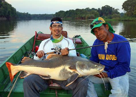 catfish redtail bolivia fish caught payara there fishing howtocatchanyfish