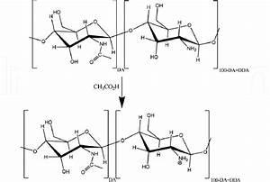 Protonation Of Chitosan In Acetic Acid Aqueous Solution
