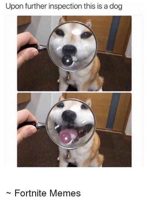 Fortnite Dog