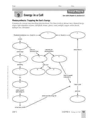 energy in a cell worksheet chapter 9 ace energy