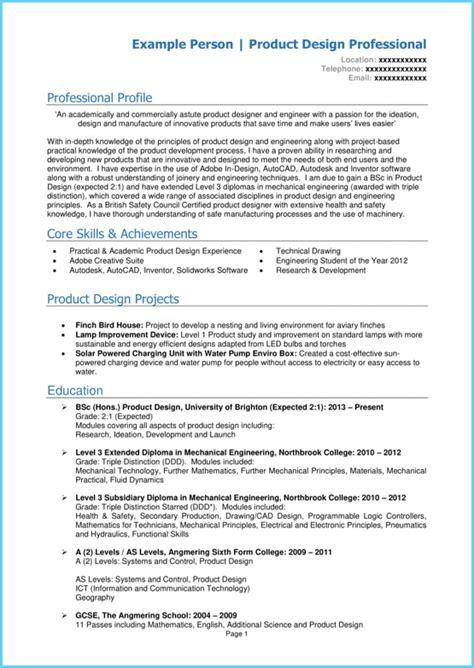 cv template  young person  professional cv