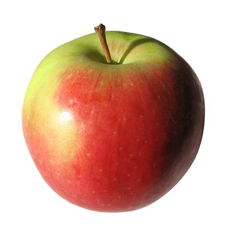 apple s musings of a runner i spent 27 on apples
