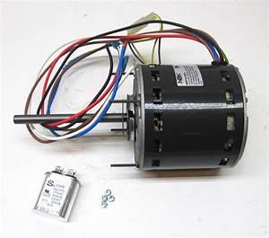 Furnace Air Handler Blower Motor 3  4 Hp 1075 Rpm 230 Volt