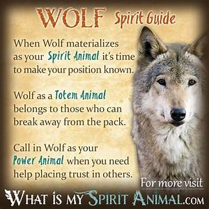 wolf spirit meaning - Music Search Engine at Search.com