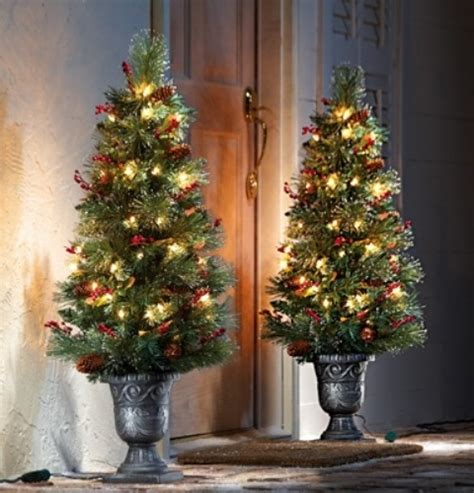 christmas tree doorstep decor pictures   images