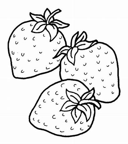 Strawberry Coloring Strawberries Pages Fruits Drawing Fruit