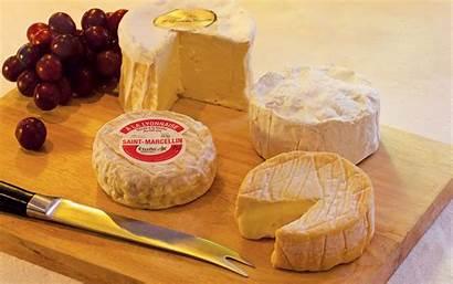 French Box Cheese Cheeses Tasting European Wine