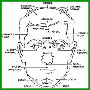 17 Best Images About Face Reflexology On Pinterest