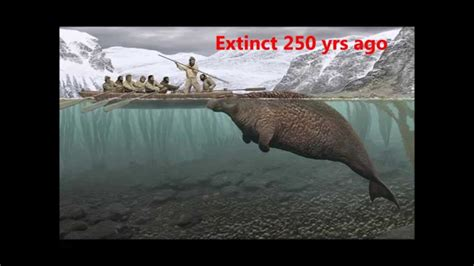 unbelievable animals  coexisted  humans
