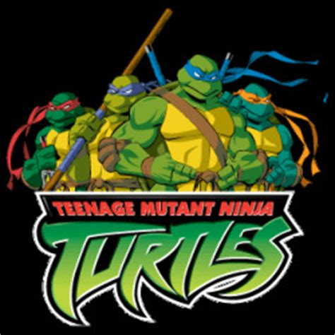 Teenage Mutant Ninja Turtles - Foxbox