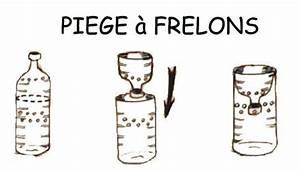 Piege A Frelon : contre les frelons asiatiques ~ Farleysfitness.com Idées de Décoration