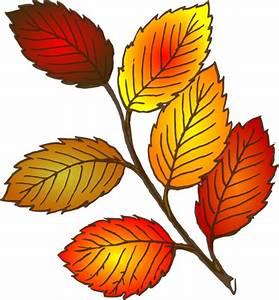 Autumn Leaf Clip Art at Clker.com - vector clip art online ...
