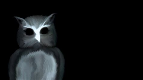 Creepy Owl Wallpapers owl witch rumored in