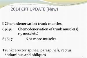 2015 Neurosurgery Update