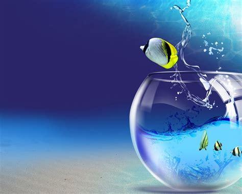 pez  saliendo de la pecera  fondos de