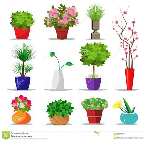 vasi per la casa insieme dei vasi da fiori variopinti e dei vasi per la