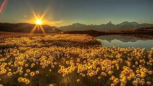 Picture, Switzerland, Bergsee, Goms, Sun, Nature, Lake, Bellis