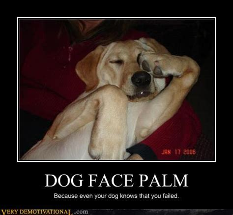 Palm Face Meme - looking for a puppy english forum switzerland