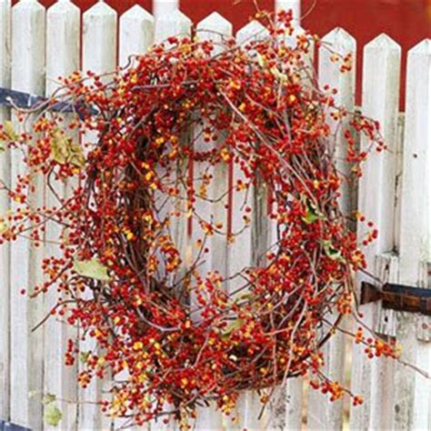 Decorated Chaos Incorporating Bittersweet Into Your Fall. Cheap Las Vegas Hotel Rooms. Sports Nursery Decor. Decorative Shelf Liners. Discount Wall Decor. Cute Affordable Home Decor. Bathrooms Decor. Old Country Decor. Angel Decor