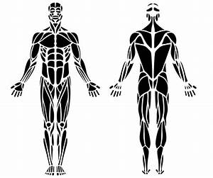 Various Body Pain Symptom And Treatment