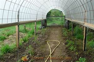 Fabriquer Une Serre En Bois : abri pour tomates les tomates sous serre ~ Melissatoandfro.com Idées de Décoration