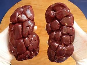 Bovine Kidney Offal Meat  U00b7 Free Photo On Pixabay