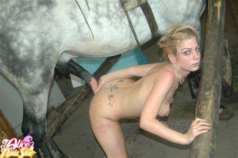 Trained Dog Banged This Beautiful Whore
