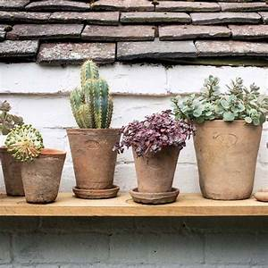 Set, Of, Terracotta, Plant, Pots, By, Idyll, Home