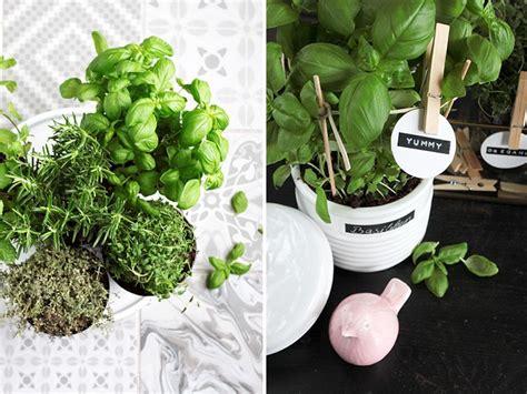 Diy Kräutergarten Für Die Küche • Ich Liebe Deko