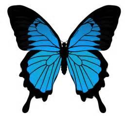 Blue Butterflies Drawings