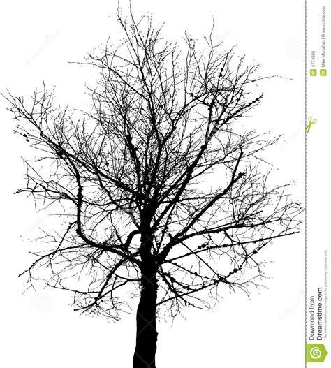 black trees black tree stock vector illustration of background barren 4774600