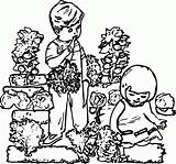 Coloring Garden Drawing Children Gardening Popular Ace Album Coloringhome sketch template