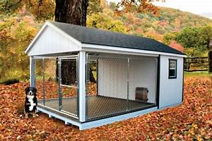 turning your garden shed in to a dog kennel animal With outdoor dog kennel attached to house