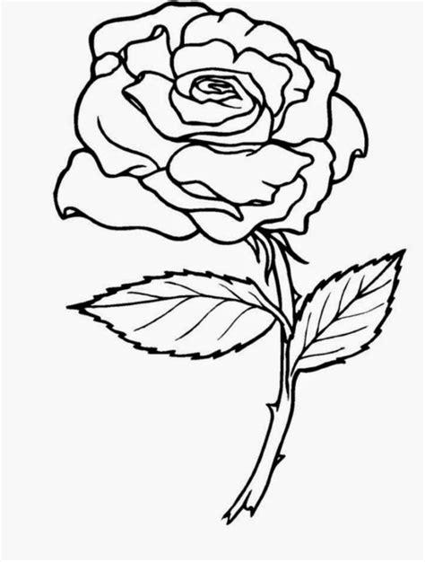 mewarnai gambar bunga mawar dalam pot