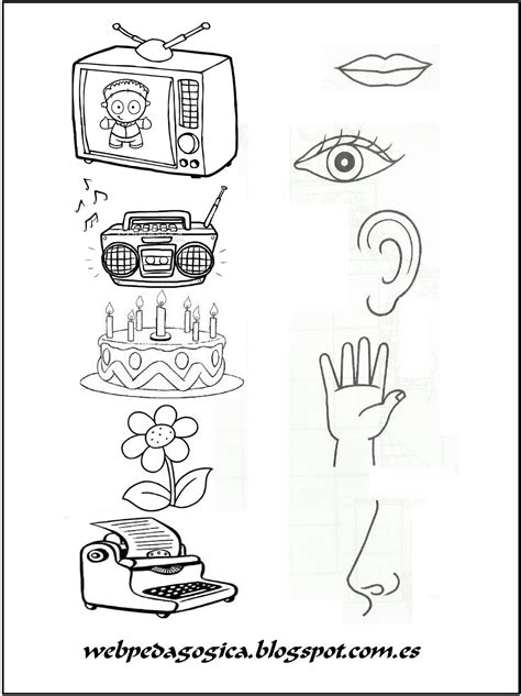 5 Sentidos Dibujos Para Colorear Dibujos Para Dibujar