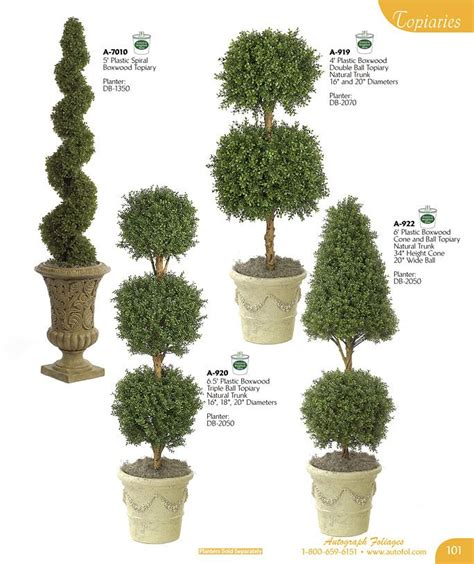 Statement Boxwood Topiary And Evergreen  Floral Topiary