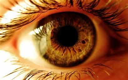 Eyes Close Eye Ojo 4k Human Macro
