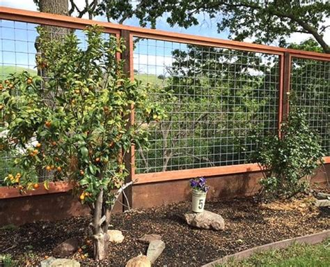 deer fencing construction portfolio    fencing