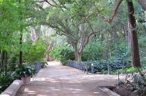 Botanischer Garten Malaga by Jard 237 N Botanico La Concepci 243 N M 225 Laga Nature