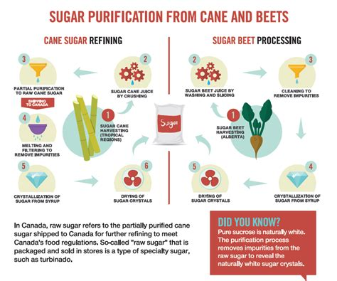 The Process of Cane Sugar Refining