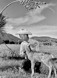 A century of wildlife management, part 4 - New Mexico ...