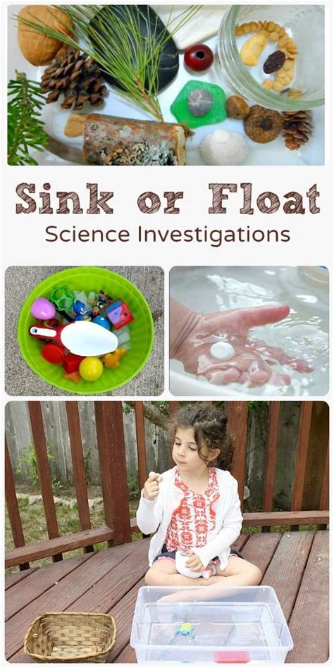 sink or float experiment 716 best images about science for kids on pinterest