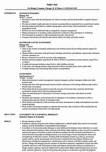 Economist resume samples velvet jobs for Economics professor resume
