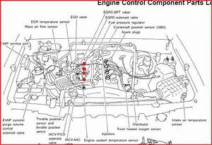 6 Best Images Of 2001 Nissan Engine Diagram