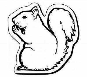 2.37x2.37 Custom Printed Squirrel Shaped Magnets 20 Mil ...