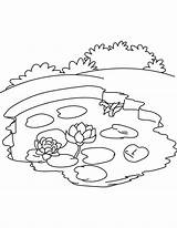 Pond Coloring Lake Pages Ecosystem Water Printable Drawing Lily Ocean Nature Drawings Template Getdrawings Sketch 9kb 792px Templates sketch template